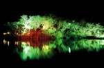 佳作上野池冬の夜景 上野公園.JPG